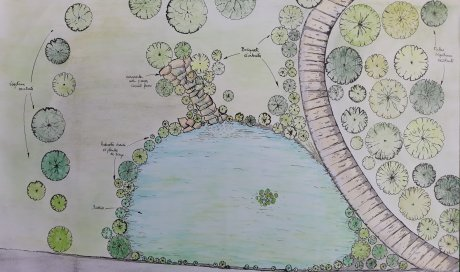 Plan de masse 'Projet jardin avec bassin d'agrément'