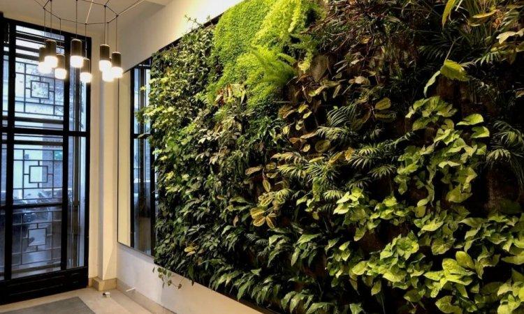 Mur végétal , hall d'entrée à Moulins
