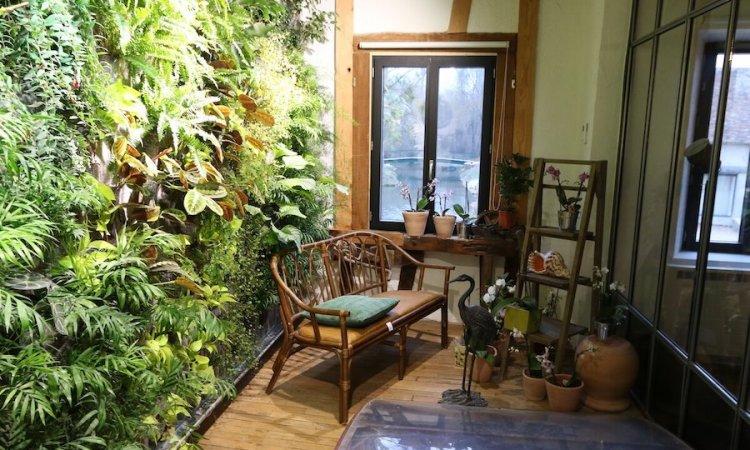 Mur végétal intérieur , maison individuelle à Bourbon-Lancy