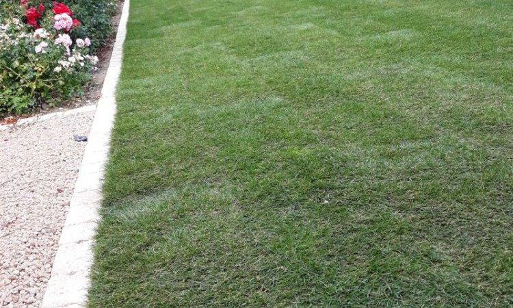 Création jardin , pose de gazon naturel en rouleau à Bourbon-Lancy