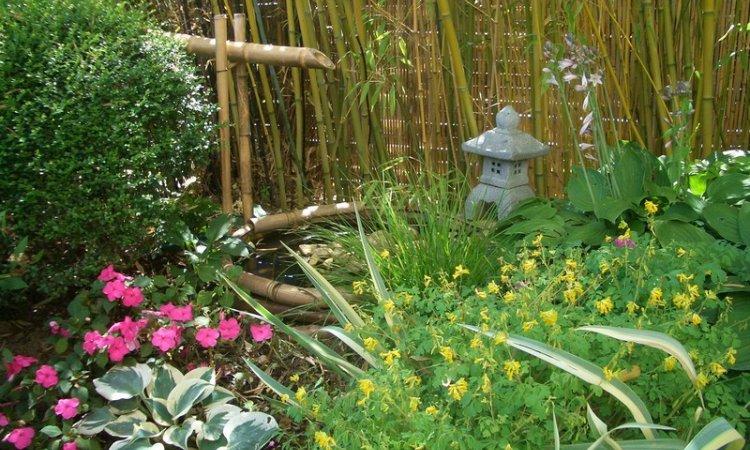 Création jardin ambiance Asiatique à Bourbon-Lancy